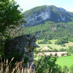 Les ruines de Foirevieille